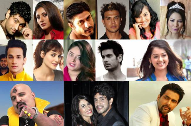 Bigg Boss 9 Contestants name